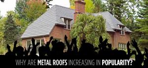 metal-roofs-popularity-American-Metal-Roofs